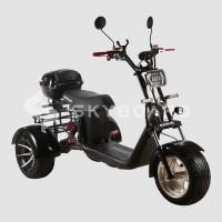 Электроскутер SKYBOARD TRIKE BR60-3000 PRO